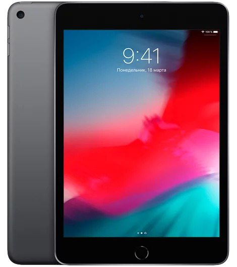 iPad mini 2019 256 GB Space Gray 2019 Wi-Fi